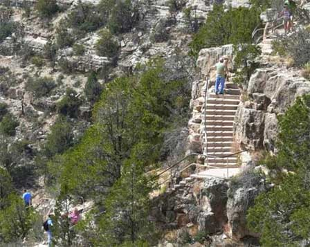 Picture of Walnut Canyon Stairs To The Indian Ruins